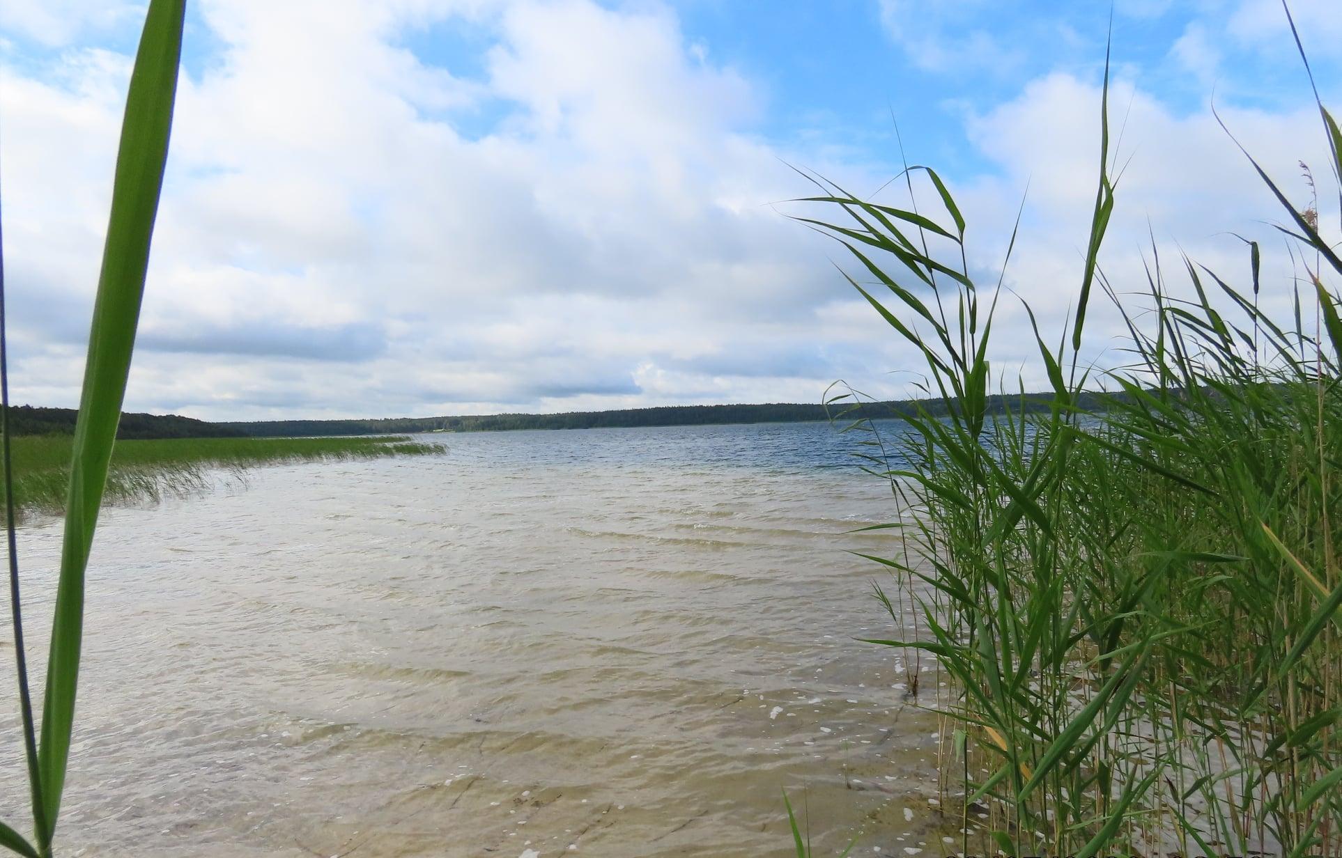 fot. Jezioro Święte, Litwa